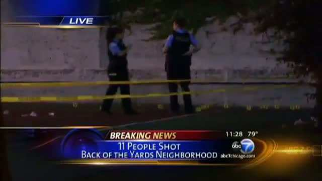 Chicago Park Shooting
