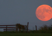 The Final Supermoon of the Summer Promises a Spectacular Show