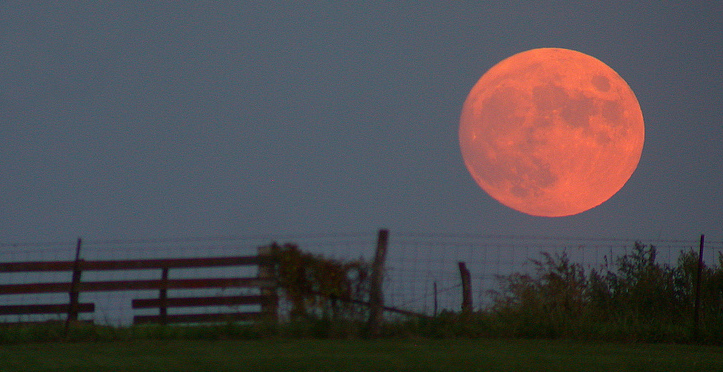 Harvest Moon 2013: Canadians Will Have Best View Tonight After Sunset