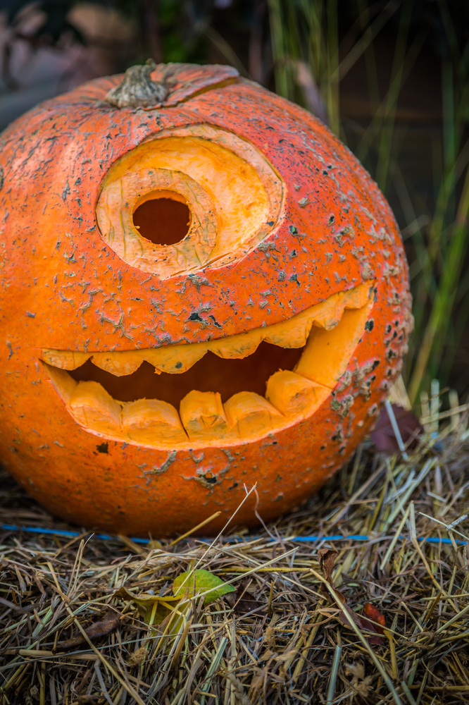 Mike From 'Monster's Inc' halloween pumpkin on hay