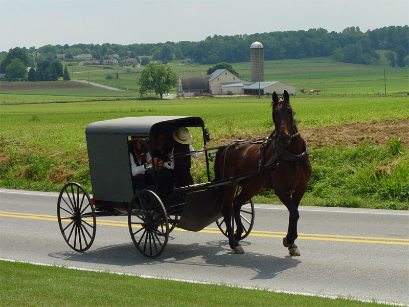 Amish Buggy Accident In PA:  Mother, Daughter Dead