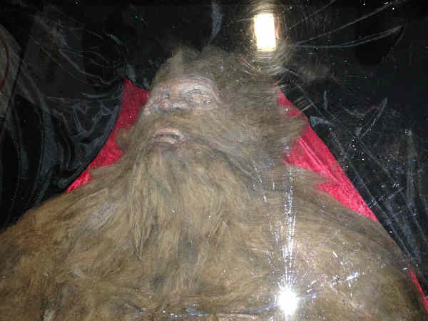 Believe it or not: Here lies Bigfoot who was killed by used car salesman, Rick Dyer in 2012. He is now on tour with the corpse. Dyer is the same person who staged a Bigfoot hoax in 2008 but this time he swears he is not lying