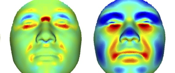 Researchers use computer program to crudely predict a facial structure from genetic variations. | PlosOne, doi:10.1371/journal.pgen.1004224.g002