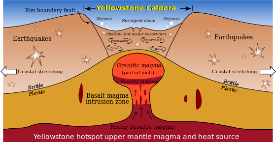 "At Yellowstone and some other volcanoes, some scientists theorize that the earth's crust fractures and cracks in a concentric or ring-fracture pattern. At some point these cracks reach the magma ""reservoir,"" release the pressure, and the volcano explodes. The huge amount of material released causes the volcano to collapse into a huge crater—a caldera."" From nps.gov"