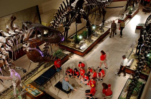 File picture fo illustration shows visitors at a dinosaur display room at the Carnegie Museum of Natural History in Pittsburgh, Pennsylvania, on May 13, 2004 (Getty/AFP/File, Jeff Swensen)