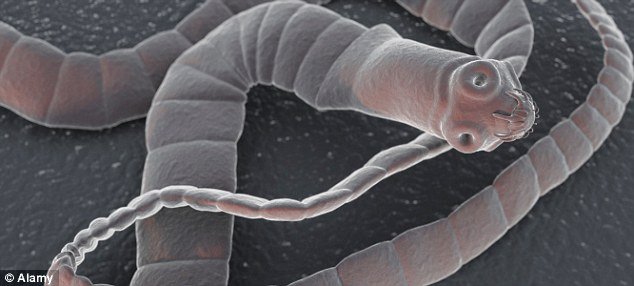 Tapeworms have been marketed as a weight loss remedy for nearly 100 years but doctors warn that ingesting them is extremely dangerous
