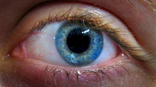 Eye Tests May Help Early Diagnose Alzheimer's Disease