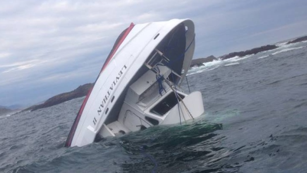 Whale Watching Boat Capsizes Killing 5, Rouge Wave Blamed (PHOTO)