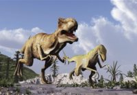 Dinosaurs Already Had Problems Long Before Their Extinction