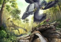 Canadian Study: How Bird-Like Dinosaurs Survived Mass Extinction