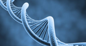 Project to Synthesize the Human Genome Met With Criticism | eCanadaNow