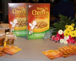 """Honey and Nut Cheerios Hopes To Plant 100 Million More Wildflowers In Canada as part of """"Bee Hunt"""" Campaign"""