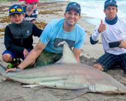 Trump Jr. shark Pic Goes Viral